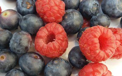 The benefit of berries – antioxidants & gut health